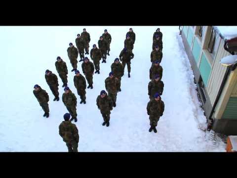 Harlem Shake original army!!!