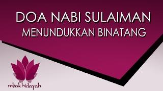 Video Doa Nabi Sulaiman Doa Penunduk Hewan dan Jin juga untuk mengusir makhluk halus atasi kesurupan download MP3, 3GP, MP4, WEBM, AVI, FLV Oktober 2017