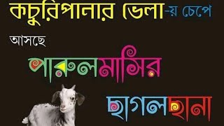 A bengali writer focusing on society