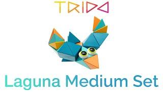 Trido Laguna Medium Set - How to build a Bird