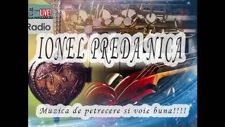 Ionel Preda Nica - Colaj sarbe si hore live 2017 muzica de petrecere si voie buna noua