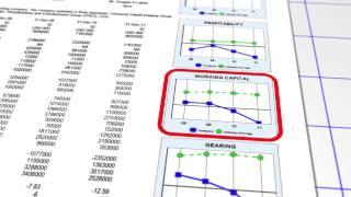 The Plimsoll Analysis - Analysing Eastman Kodak