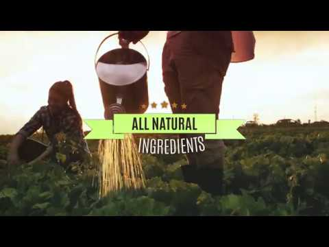 BurgerFi Evergreen Commercial