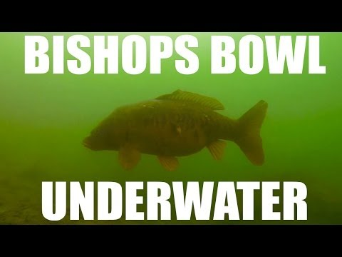 Bishops Bowl Fishery - Green Hill Lake - Underwater Footage