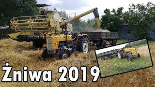 Żniwa 2019*PIerwszy Wjazd w Owies! [#1]