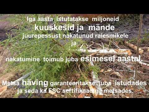 Metsakasvatuse ABC (raie ja mets)