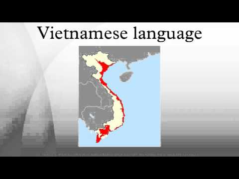 what are the main languages spoken in vietnam