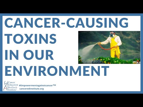 TOXINS IN OUR ENVIRONMENT | Cancer Education and Research Institute (CERI)