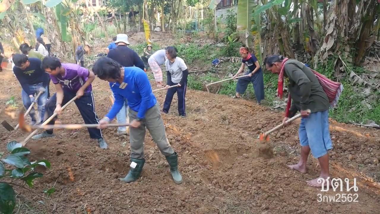 เลี้ยงดินให้ดินเลี้ยงพืช(3กพ2562)