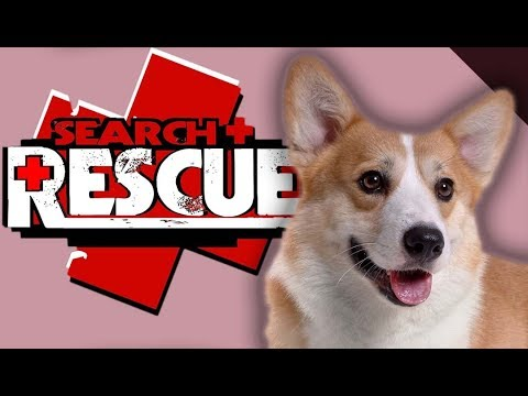 RESCUE DOG! | Lost and Hound (1)