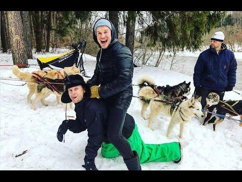 Cмотреть видео онлайн Подмосковная Аляска. Путешествие на собачьих упряжках. Муж на час. Артем против игуаны.