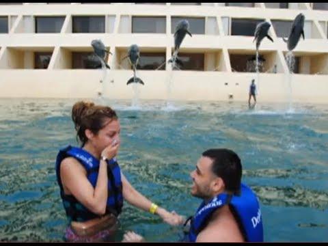 AMAZING Dolphin Swim Proposal (Engagement)