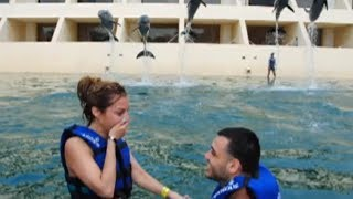 AMAZING Dolphin Swim Proposal (Engagement)