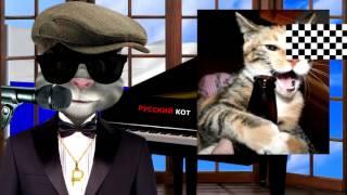 Русский Кот   Человек и кошка