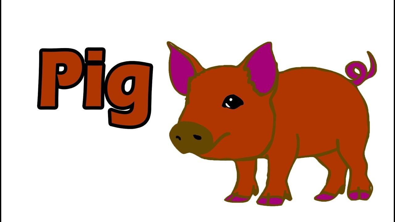 How To Drawing Pig, Drawing Pig For Kid 2019