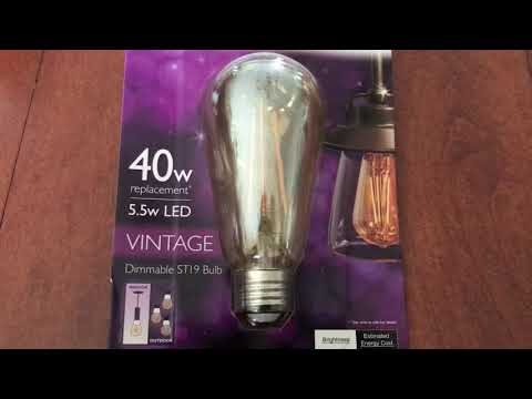 Vintage Thomas Edison Bulbs come in LED - AWESOME & Saves Money!
