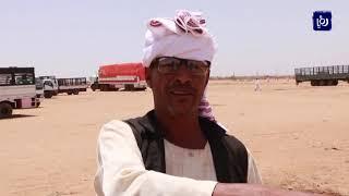 الأحداث السياسية تلقي بظلالها على البدو وتجار الماشية في السودان (13-7-2019)