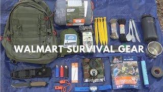 Overnight $250 Walmart Survival Challenge