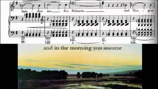 Stille Tränen (Kerner-Lieder) - Robert Schumann