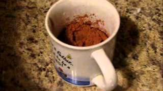 Quick And Easy Microwave Brownie In A Mug-chocolate Fix