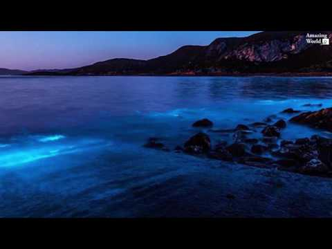 Thumbnail: Bioluminescence event at Preservation Bay in Tasmania