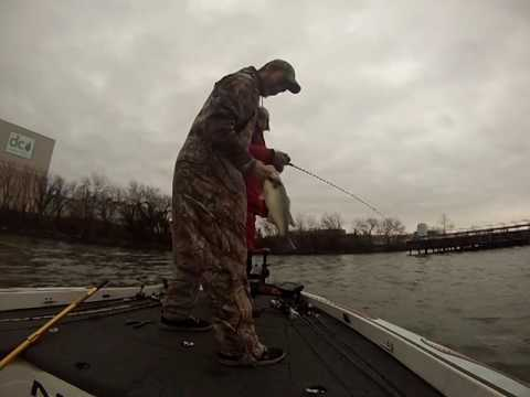 Potomac River Bass Fishing