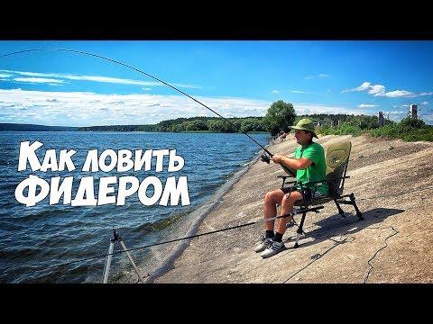 Как ловить на ФИДЕР новичку. Рыбалка на фидерную снасть для начинающих