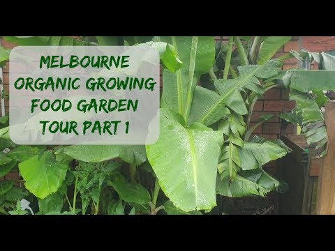 Melbourne organic food garden tour part 1