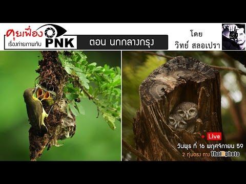 (Live) ถ่ายนกกลางกรุงฯ รายการ คุยเฟืองเรื่องถ่ายภาพกับ PNK #3