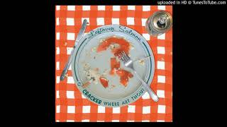Cracker & Leftover Salmon - Teen Angst (What The World Needs Now)