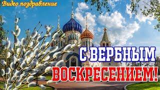 С ВЕРБНЫМ ВОСКРЕСЕНЬЕМ  Видео поздравление  Видео открытка