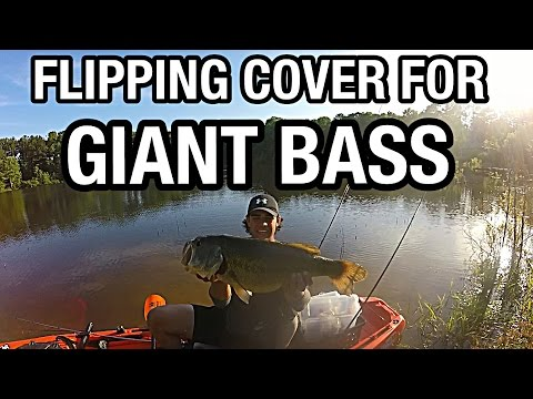 Flipping Cover for Giant Bass