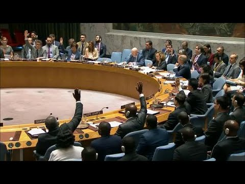 UN Security Council rejects US-backed resolution on the protection of Palestinians