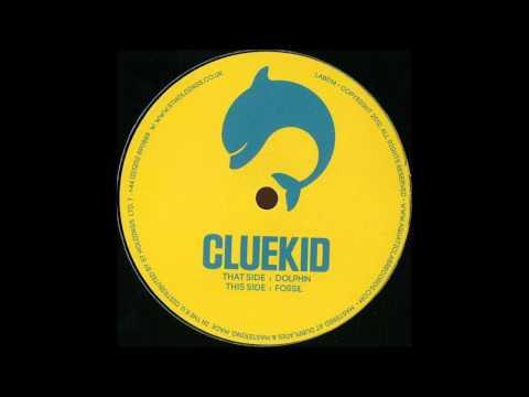 Cluekid - Dolphin