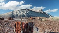 Petrified Forest National Park Arizona - Music and Photography by Ray Tutaj Jr.
