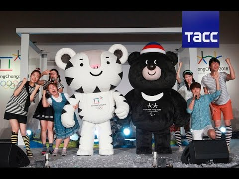 Тигр и мишка: презентация зимних Олимпийских талисманов 2018