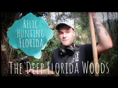Treasure Hunting The Deep Woods Of Florida