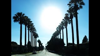 ♡Beauty of Loma Linda City (로마 린다), CA, USA