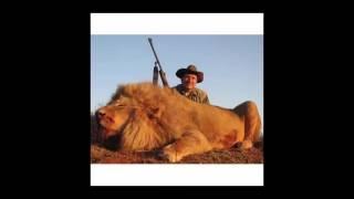 Охота и рыбалка. Сафари.