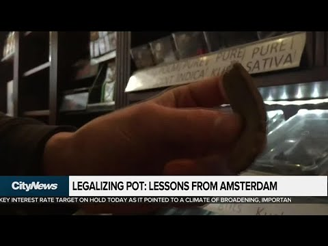 What we can learn from Amsterdam about pot legalization