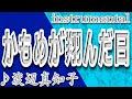 かもめが翔んだ日/渡辺真知子/Instrumental/歌詞/KAMOMEGA TONDA HI/Machiko Watanabe