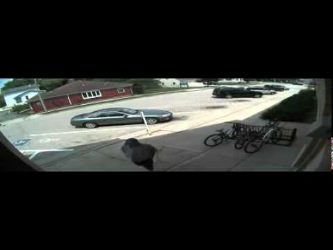 Raw Video: Waterford Library Robbery Attempt Suspect