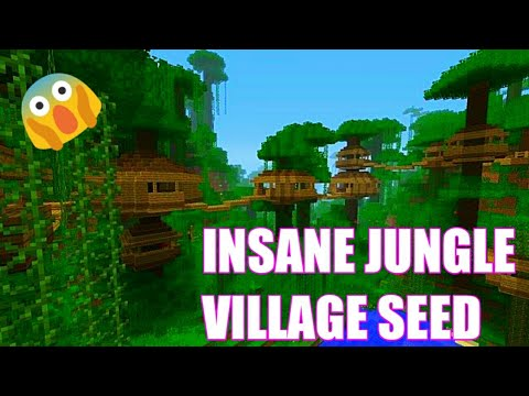 INSANE JUNGLE VILLAGE AND TEMPLE SEED