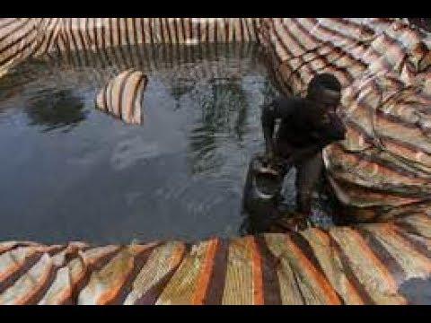 The Osasu Show: Development in the Niger Delta