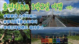 용평리조트1박2일패키지여행!!/발왕산스카이워크/루지/4…
