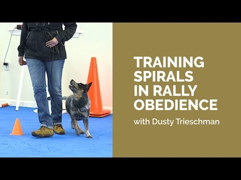 Training Spirals In Rally Obedience