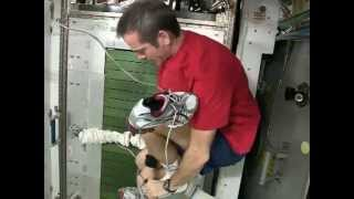 Fitness and Exercise Aboard the Space Station | CSA Science Video