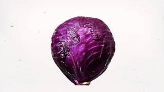 """ストレス軽減動画""""公開中!】 カラフルな野菜が「KAGOME LEAF PACK」に..."""