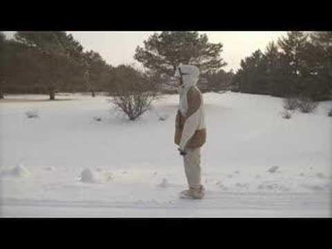 Sufjan Stevens - Concerning The UFO Sighting Near Highland Illinois (Morning I Use Magic)