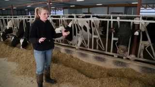 Cottonwood Ridge Dairy – Customer Story (United States)